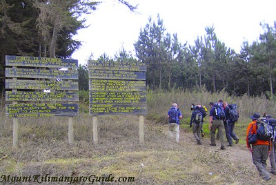 Start of the Rongai Route up Kilimanjaro