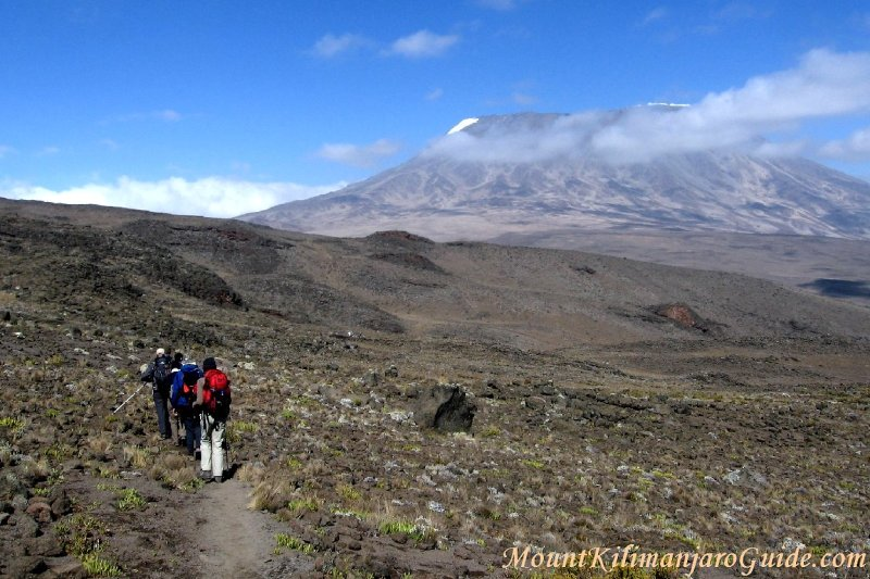 Trekking up Mt. Kilimanjaro