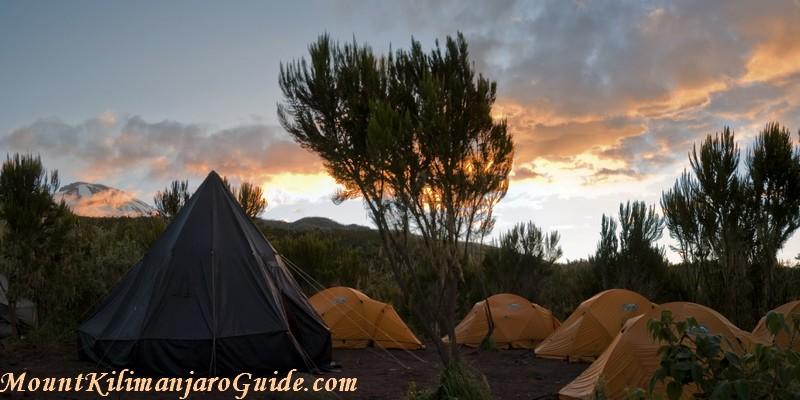 Machame Camp