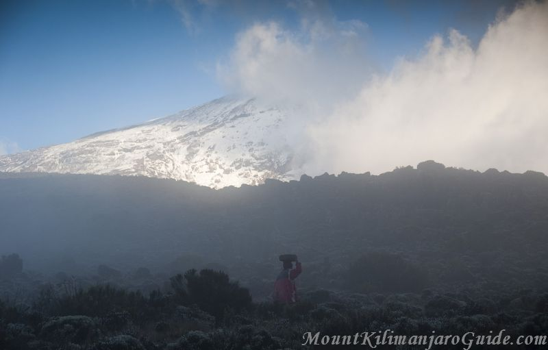 Misty morning on Kilimanjaro