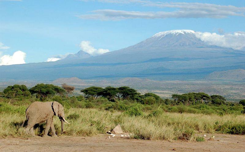 Classic Kilimanjaro picture