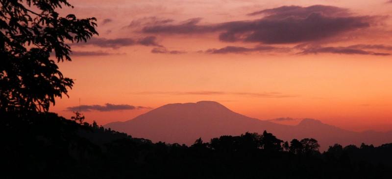 Kilimanjaro at dawn
