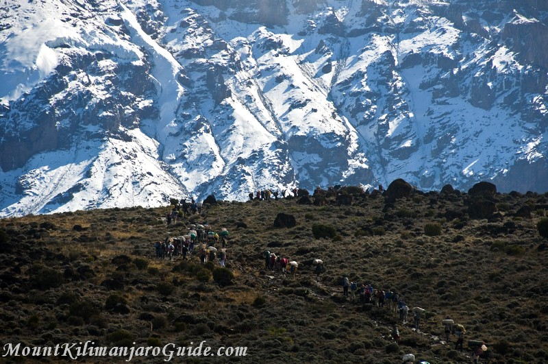 Climbers and Porters on the Machame Route
