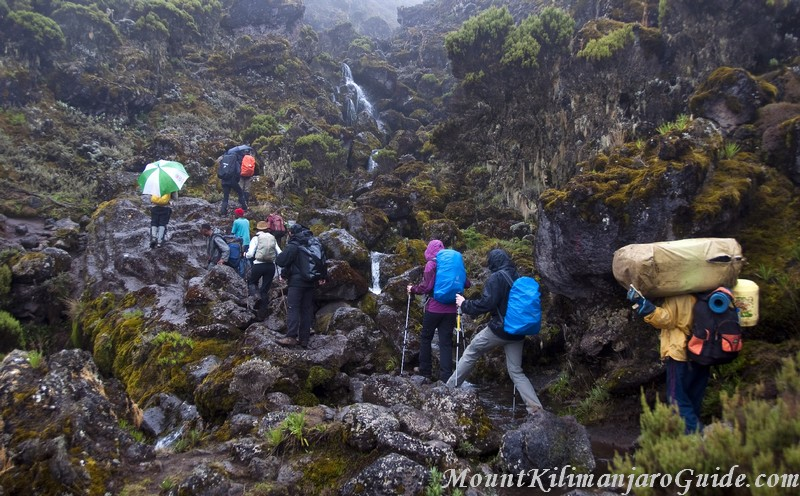 Second day on Machame Route, still rainy