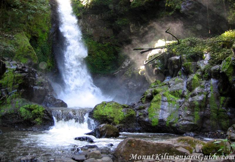 Mount Kilimanjaro Picture, Kilasiya Falls