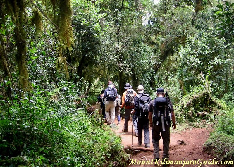 Day 1 on the Marangu Route, Kilimanjaro