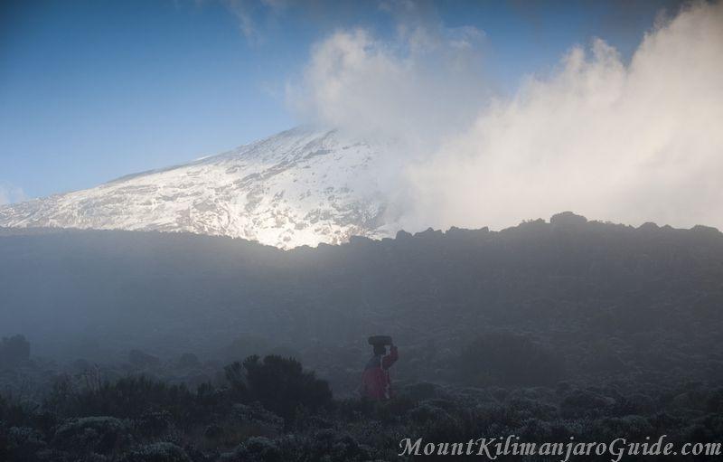 Misty morning on Kilimanjaro