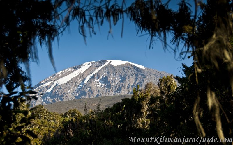 Clear view of Kilimanjaro