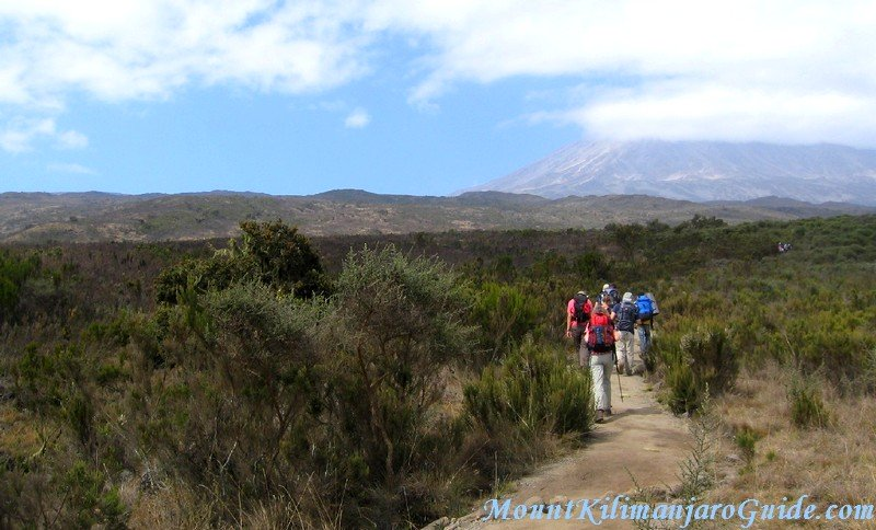 Walking on Kilimanjaro on day 2