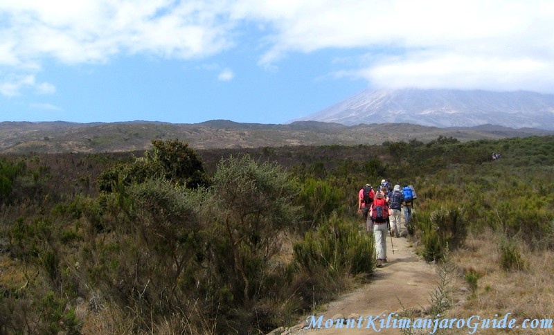 Walking on Kilimanjaro on day 2