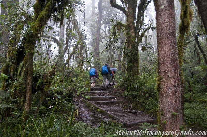 A typically rainy day 1 on the Machame Route